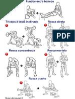 Treino de Braços Bíceps e Tríceps