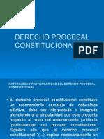 derechoprocesalconstitucionaljusticiaconstitucionalcalnotariado-130712153212-phpapp01