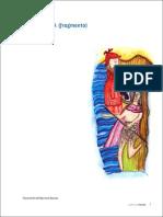 Articles-23753 Recurso PDF