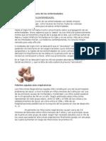 Prevención Inmunitaria de Las Enfermedades