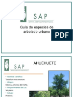 Especies Arbolado Urbano SAP