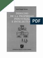 Derecho de La Propiedad Industrial e Intelectual - PDF