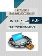 internal-audit-in-erp-environment.pdf