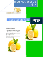 Limón jujuy