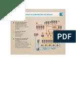 Resumen_proceso Elaboracion de Helado