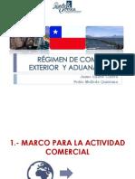 GuiaImportarChile110615.pdf