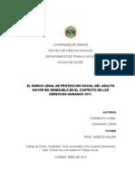 VENE004 Marco Legal Preoteccion Social AM Venezuela en El Contexto de DDHH 2011