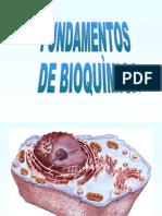 FUNDAMENTOS DE BIOQUIMICA
