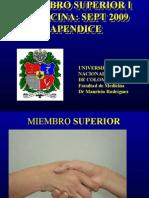 Apendice Miembro Superior 1 2009