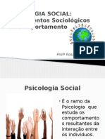 Fundamentos Sociológicos Do Comportamento