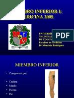 MIEMBROINFERIORI  MEDICINA2009