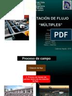 03 Unidad I Proceso de Campo