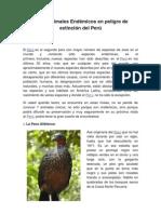 Los 7 Animales Endémicos en Peligro de Extinción Del Perú