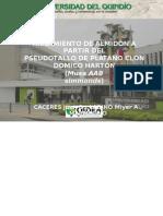 Aislamiento de Almidón a Partir Del Pseudotallo de Platano Clon Domico Hartón (Musa Aab Simmonds). Andrés Felipe Marmolejo