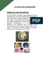 Bacterias Utiles