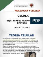 Clase 2 biologi molecular rosario