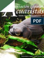 Boletín Asociación Española de Acuaristas nº12