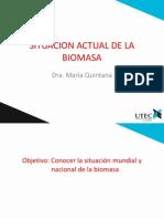 Situación Actual de la Biomasa.pdf