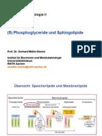 für pdf Zuellbio II GMN 5 Phosphoglyceride und Sphingolipide 2013