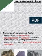 metamorphic powerpoint