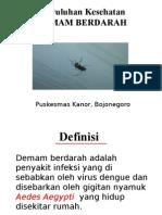 Penyuluhan Dbd, demam berdarah, nyamuk