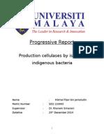 An Example of Progressive Report