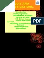 Audit Investigations