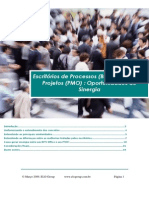 5-Escritorio de Processos BPM Office e de Projetos PMO-Oportunidade de Sinergia