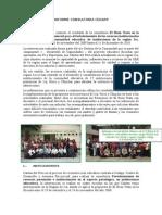 Informe Consultoria Cedapp.doc.Vf.ultimo (1)