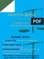 Reales Introduccion 2010