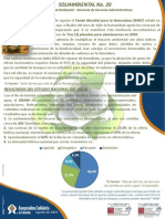 Documento soliambiental