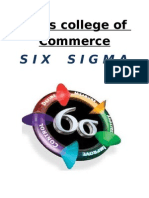 Six Sigma(2)