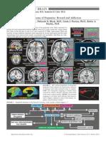 neuropathy of addiction