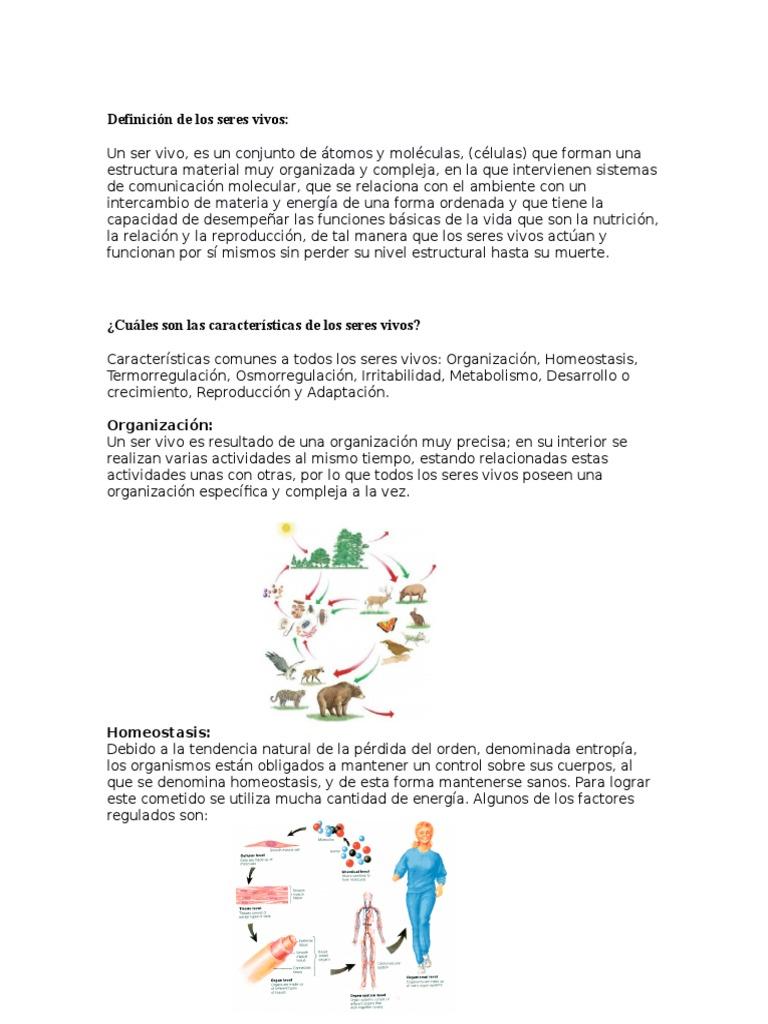 Ideas súper útiles para mejorar Acelerar metabolismo