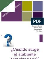 Ppambienteorganizacional Definitiva 131003225218 Phpapp01
