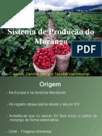 Morango- fruticultura