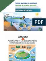 Ecosistemasacuatico 18 PDF