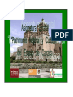 AISG-EST-Oaxaca_patrimonio_natural_y_cultural.pdf