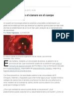 ¿Qué Efectos Tiene El Cianuro en El Cuerpo Humano_ - Lanacion