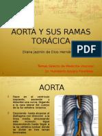Aorta y Sus Ramas Toracicas
