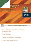 ESTRUCTURA Y FUNCIONAMIENTO DE LA SOCIEDAD.pdf