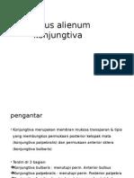 Korpus alienum konjungtiva