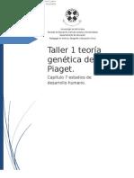 Taller Pedagógico Piaget Estadios