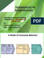 Rash Mi Kant Consumer Behaviour 2