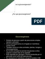 Clase de L. Palomares - gluconeogenesis ppt