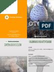 Otoño 15 Programa Rockrose Ecoturismo