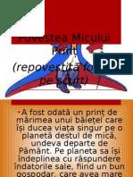 1.Rezumat Micul Print