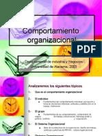 Comportamiento Organizacional Robbins (3)