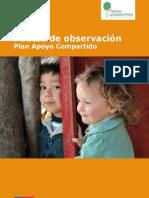 Pauta Observacion PAC