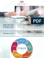 Immobilier.pdf